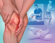 Evaluation of Knee Pain