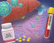 Hepatitis C virology, test and drug option